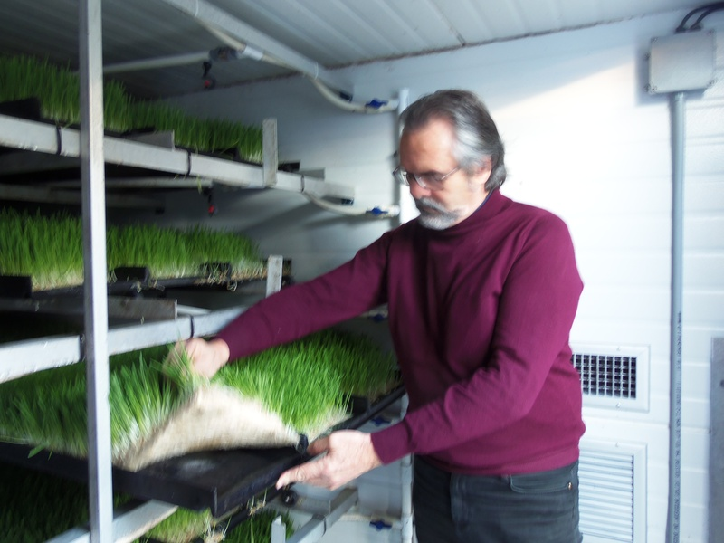 inside a professional sprouting chamber